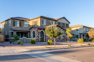 Queen Creek Single Family Home For Sale: 18818 E Reins Road