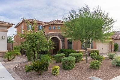 Cave Creek Single Family Home For Sale: 5313 E Barwick Drive