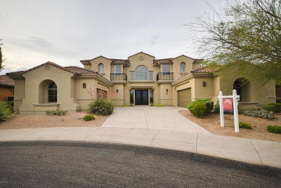 Phoenix Single Family Home For Sale: 3976 E Expedition Way