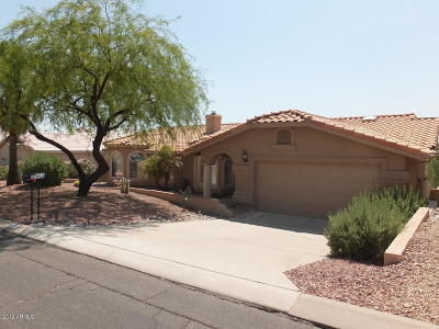 Fountain Hills Single Family Home For Sale: 15953 E Cholla Drive