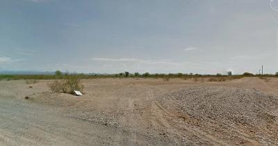 Surprise Residential Lots & Land For Sale: N 219th Avenue
