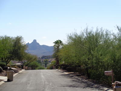 Fountain Hills Residential Lots & Land For Sale: 11220 N Garland Circle