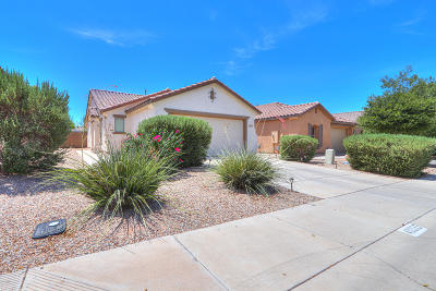 Maricopa Single Family Home For Sale: 40033 W Catherine Drive