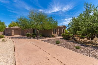 Scottsdale Single Family Home For Sale: 6386 E Bent Tree Drive