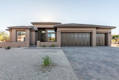 Goodyear Single Family Home For Sale: 10965 S Santa Columbia Drive