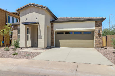 Chandler Single Family Home For Sale: 280 E Wisteria Drive