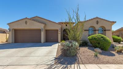 Goodyear Single Family Home For Sale: 12471 S 179th Lane