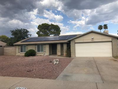 Glendale Single Family Home For Sale: 12447 N 50th Lane