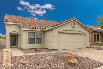 Cave Creek Single Family Home For Sale: 5008 E Peak View Road