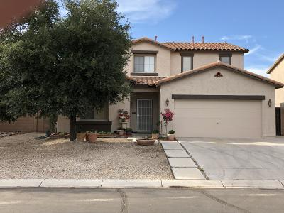 San Tan Valley Single Family Home For Sale: 532 E Chelsea Drive