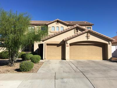 Goodyear Single Family Home For Sale: 17458 W Wandering Creek Road