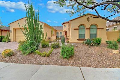Chandler Single Family Home For Sale: 3670 E San Mateo Way