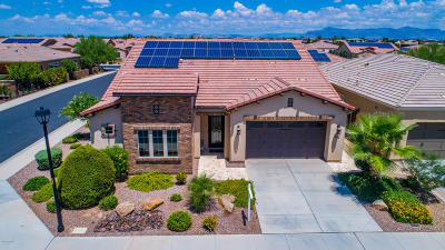 San Tan Valley Single Family Home For Sale: 1432 E Elysian Pass