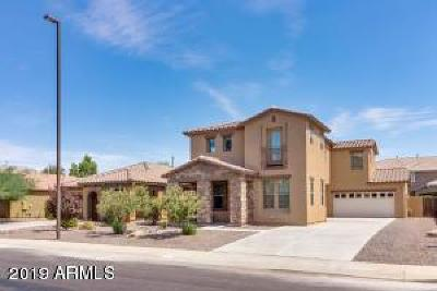 Gilbert Single Family Home For Sale: 853 E Zesta Lane
