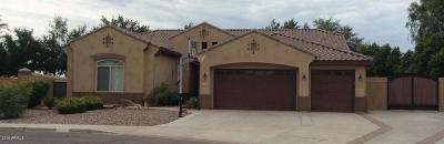 Peoria Single Family Home For Sale: 7911 W Via Del Sol