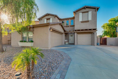 Gilbert Single Family Home For Sale: 4060 E Sidewinder Court