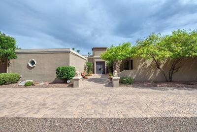 Phoenix Single Family Home For Sale: 4527 E Horseshoe Road