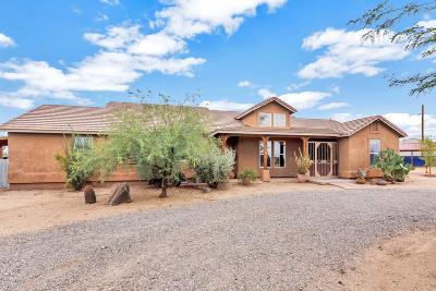 Phoenix Single Family Home For Sale: 35822 N 7th Street