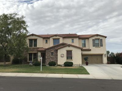 Litchfield Park Single Family Home For Sale: 19356 W Medlock Drive