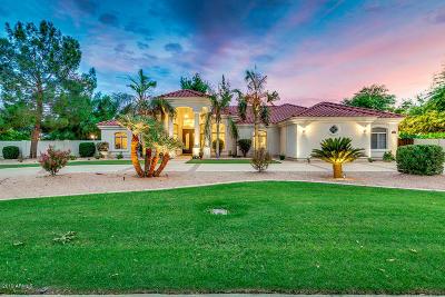 Queen Creek Single Family Home For Sale: 19415 E Silver Creek Lane