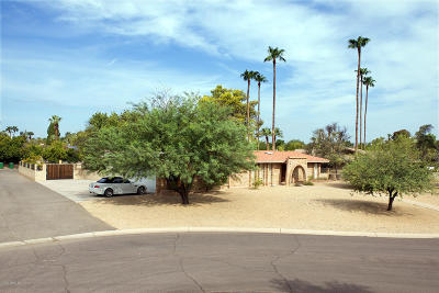 Litchfield Park Single Family Home For Sale: 677 E Fairway Drive