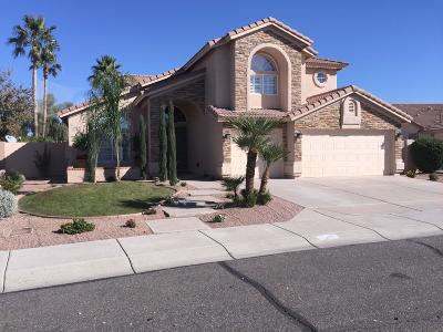 Glendale Single Family Home For Sale: 6534 W Tonopah Drive