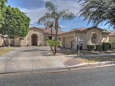 Chandler Single Family Home For Sale: 1934 W Lynx Court