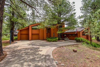 Flagstaff Single Family Home For Sale: 2373 Edward Ayer