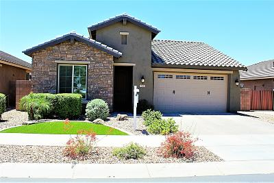Queen Creek Single Family Home For Sale: 20653 E Raven Drive