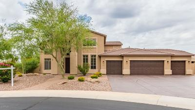 Mesa Single Family Home For Sale: 2034 N Hillridge Circle