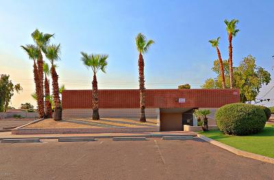 Phoenix Commercial For Sale: 4260 N 19th Avenue