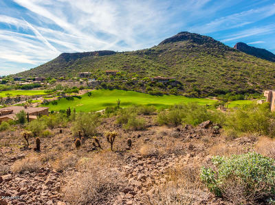 Scottsdale Residential Lots & Land For Sale: 9426 N Solitude Canyon Drive