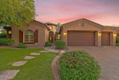 Peoria Single Family Home For Sale: 12071 W Morning Vista Drive