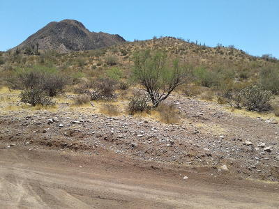 Residential Lots & Land For Sale: 33xx W Wander Road