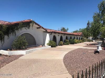 Mesa Single Family Home For Sale: 2246 E Huber Street