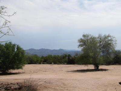 Scottsdale Residential Lots & Land For Sale: E Pinnacle Vista Drive