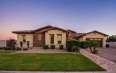 Queen Creek Single Family Home For Sale: 20137 E Via Del Palo