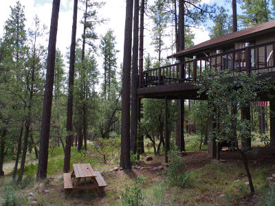 Payson Single Family Home For Sale: 482 S Canyon Drive