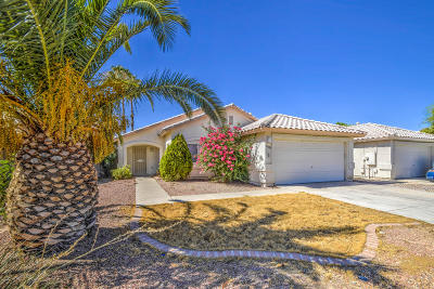 Goodyear Single Family Home For Sale: 16123 W Mesquite Drive