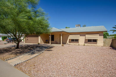Phoenix Single Family Home For Sale: 11033 S Cheshoni Street