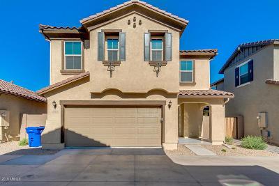 Surprise Single Family Home For Sale: 16632 W Jenan Drive