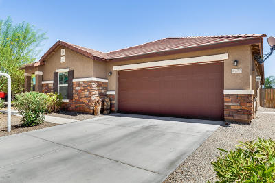 Goodyear Single Family Home For Sale: 2457 S 171st Lane