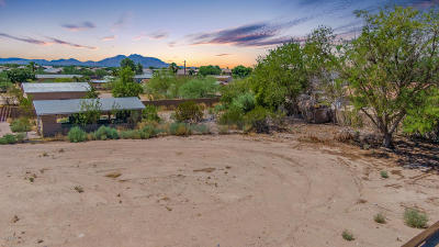 Queen Creek Residential Lots & Land For Sale: 19535 E Manzanita Road