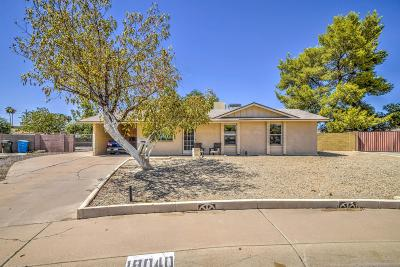 Phoenix Single Family Home For Sale: 18040 N 18th Drive