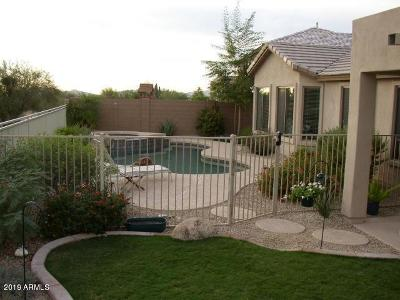 Cave Creek Single Family Home For Sale: 4035 E Desert Forest Trail