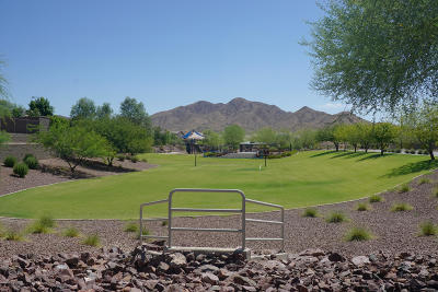 New River AZ Single Family Home For Sale: $410,000