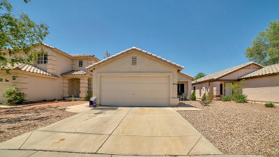 Phoenix Single Family Home For Sale: 4252 N 111th Lane