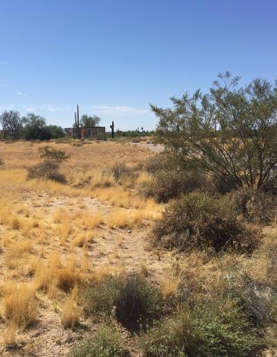 Residential Lots & Land For Sale: 9775 N Sidewinder Circle
