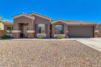 Casa Grande Single Family Home For Sale: 637 E Black Diamond Drive