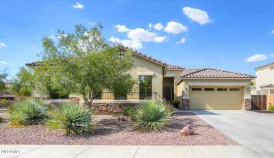 Casa Grande Single Family Home For Sale: 676 W Delray Drive